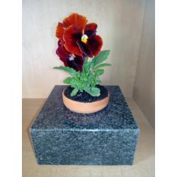 Květináč ze žuly